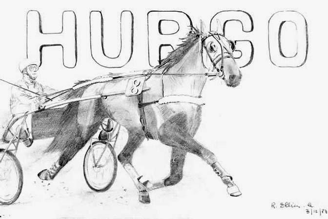 hurgo