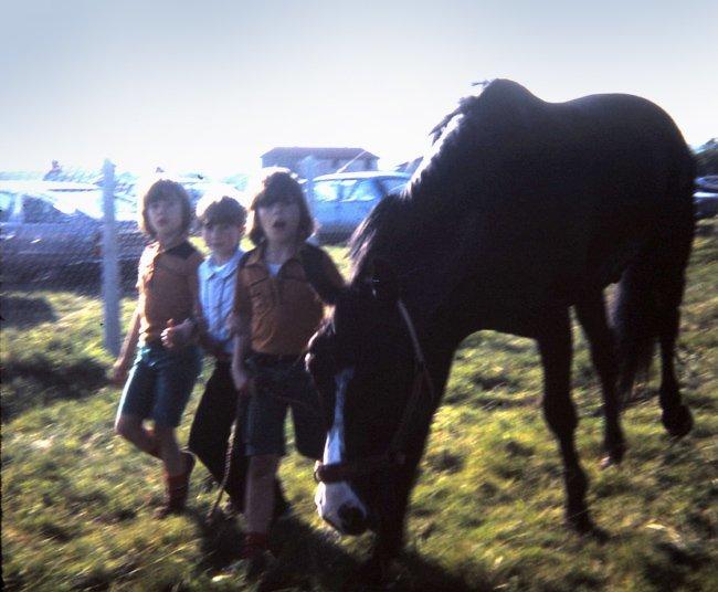 Sylvie et les neveux-