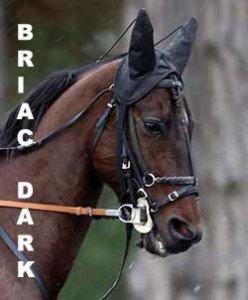 Briac Dark de la Loire