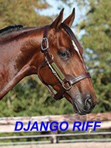 Django Riff un autre Allaire
