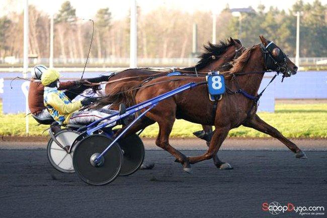 Victoire de Golden Renka JMB pour l'entraînement de JM. Baudouin